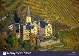 Bad Breisig Weinberge Im Herbst Weinblätter Ernte Spät Arenfels Castle Im