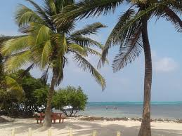 belize u2022 ambergris caye u2022 hotel del rio u2022 diving u2022 fishing u2022 vacation