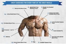 Chest Workout Dumbbells No Bench Chest Exercises For Every Part Of The Chest Muscle Weight Loss