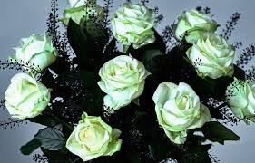 shop florist shop by occasion halloween waitrose florist