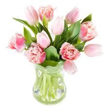 bouquet delivery candy tulips bouquet flowers delivery send flowers to poland