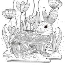 118 best animal coloring pages images on pinterest
