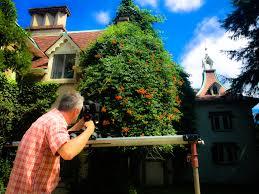 Great Pumpkin Blaze Membership by Projects Ellenbogen Creative Media