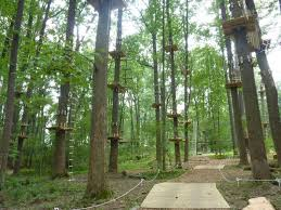 West Virginia forest images Aerial adventure park in harpers ferry west virginia is a must visit jpg