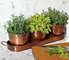 surprising idea indoor herb planter delightful decoration indoor