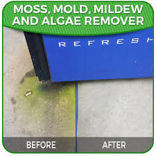 spray u0026go algae mildew u0026 mold remover stater kit multi surface