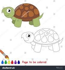 turtle colored coloring book preschool stock vector 686466823