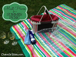 10 Must Haves For A by 10 Must Haves For A Summer Picnic Easy As Blueberry Pie Recipe