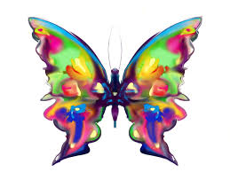 rainbow butterfly painting by maureen kealy