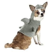 Halloween Costumes Shark 30 Asta Halloween Costumes Images Pet Costumes