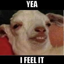 I Feel It Meme - goat meme yea i feel it