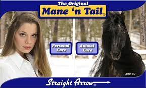 whats the trend for hair what s the latest trend horse shoo for your own hair chester