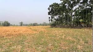 plot for sale in fresco palm city thakurpukur kolkata youtube