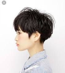 hair styles with your ears cut out 87 best hair styles images on pinterest hair cut hairstyle
