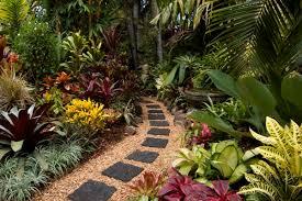 Tropical Landscape Ideas by Tropical Yard Ideas How To Garden Australia Tropical Plants