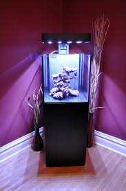 Reef Aquascape Aquascaping The Ecoxotic With Real Reef Live Rock The Lightning