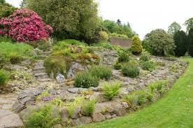 giardini rocciosi in ombra come creare un giardino roccioso giardino fai da te