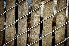 Wood Slats by Chain Link Fence Wood Slats