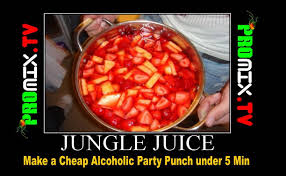 make a cheap alcoholic party punch under 5 min part 2 youtube