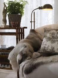 fur throws for sofas faux fur sofa throws www cintronbeveragegroup com
