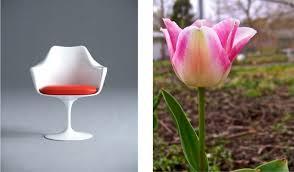 Tulip Chair The Dichotomies Of Saarinen U0027s Tulip Chair Bienenstock Furniture