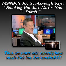 Pot Memes - joe scarborough pot meme the whirling windthe whirling wind