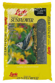 shafer seed sunflower hearts for wild birds 25 lbs walmart com