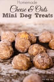 recipes for dog treats cheese oats mini dog treats miss molly says