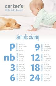 25 best expecting a baby ideas on pinterest baby fever baby