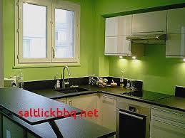 meuble cuisine vert anis peinture pour meuble de cuisine pour idees de deco de cuisine