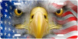 Flag Face Amazon Com American Eagle Face In Flag License Plate Novelty Tag