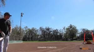demarini corndog softball bat demarini 2015 corndog slowpitch softball bat wtdxcdsoo