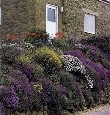 17 best rock gardens images on pinterest google images rock