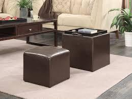 Single Ottoman Storage Bed by Amazon Com Convenience Concepts Designs4comfort Park Avenue
