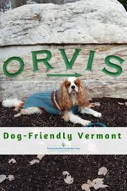 Vermont traveling with pets images Dog friendly vacations in manchester vermont dog friendly jpg