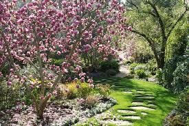 small garden trees australia cori matt garden