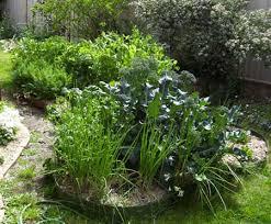 garden design garden design with gardening australia fact sheet