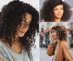 hair cuts to increase curl and volume the best haircuts for curly thick and fine hair verily