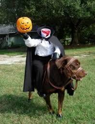 Husky Dog Halloween Costumes Http Weheartit Entry 250244512 Huskies