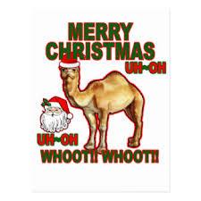 Hump Day Camel Meme - hump day camel santa cards greeting photo cards zazzle