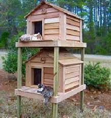 build a cozy low cost cat shelter for outdoor cats catster