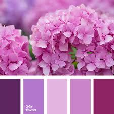 shades of purple color shades of purple color palette ideas