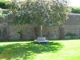191 best walled garden images on pinterest walled garden gabion