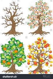 vector set trees different seasons winter stock vector 415286677