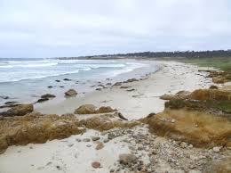 spanish bay beach pacific grove ca california beaches