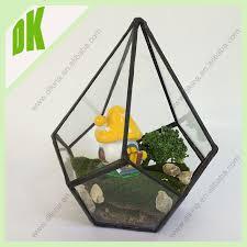 plant terrarium brings a little bit of nature into your home