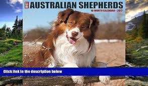 australian shepherd 2016 calendar read the new book just westies 2017 wall calendar dog breed