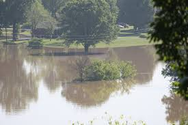 file nashville flood trees jpg wikimedia commons