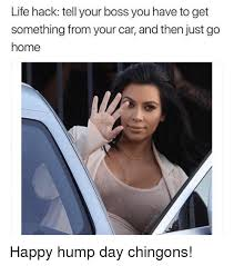 Meme Hump Day - 25 best memes about happy hump day happy hump day memes