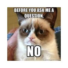 Exles Of Internet Memes - cats polyvore